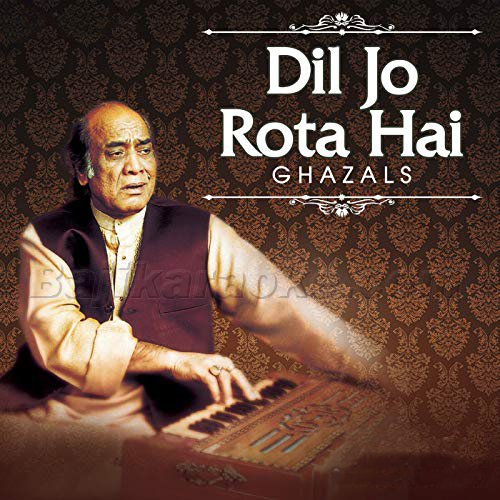 Dil Jo Rota Hai - Karaoke MP3 - Mehdi Hassan Mp3
