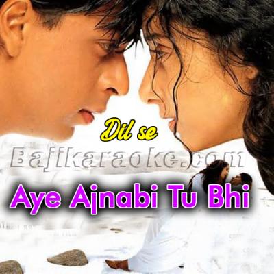 Aye Ajnabi Tu Bhi Kabhi Aawaz De - Karaoke Mp3