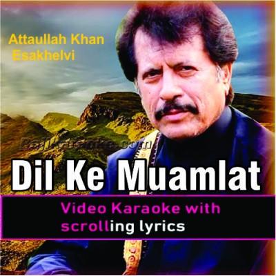 Dil Ke Mamlat Se Anjan - Ghazal - Video Karaoke Lyrics